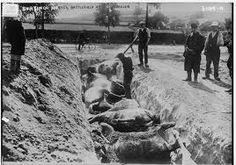 están enterrando a personas muertas