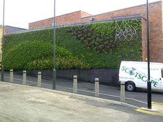 living walls add interest to plain brick walls