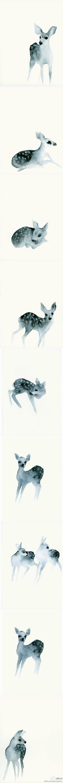 简单却有神韵的小鹿。作者:Catherina Turk