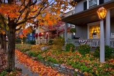 Autumn, on Quaint Street, USA