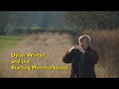 ▶ Dylan Winter and the Starling Murmurations - (It's the Otmoor Reserve near Oxford, UK. Halfway between London & Birmingham.)
