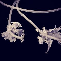 gulnurozdaglar Jewelry