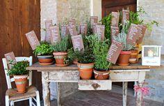 tableau de mariage with plants arometiche                                                                                                                                                      More