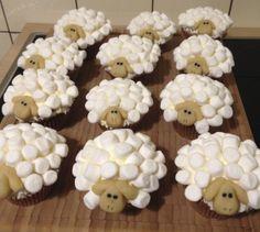 herd of marshmallow muffin sheeps - Imgur