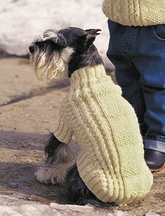 Cables and Hearts Dog Coat