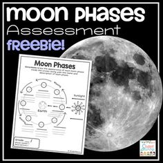 Free assessment for students who are studying moon phases. You may also enjoy: Moon Phases Trading Cards Science Trading Card BUNDLE! Science Lessons, Science Activities, Science Ideas, Teaching Science, Teacher Resources, Teacher Pay Teachers, Cold Brew Coffee Maker, Exit Tickets, Middle School Science