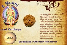 Benefits of six mukhi: God: Kartikeya / Planet : Venus  Its ruling planet is Venus. This Rudraksha represents Lord Kartikeya, the second son of Lord Shiva. When invoked, it blesses the wearer with wisdom, increased intelligence, will power and a steady mind. It improves artistic qualities, expression and oratory skills. Good for teachers, executives, journalists and those who want to improve their communication. http://www.rudralife.com/index.php