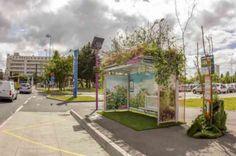 Les « floralies », c'est une exposition horticole où les jardiniers exposent leurs sculptures florales ou leur décor végétal pour le plus grand plaisir des yeux. Pour l'édition Nantaise, Abri Services, spécialisée dans l'affichage et le mobilier urbain, aidé par l'agence  Axellescom, ont eu l' idée insolite d'abris-bus végétalisés