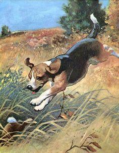 Vintage Beagle Dog Print, Wesley Dennis, 1950's Children's Dog Book Illustration, Fun Wall Decor