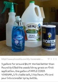 Homemade Weed Killer - works  Gonna Try this today, we've heard great things about it!