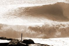 wave ph Guglie