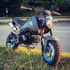 adventure grom - Google Search