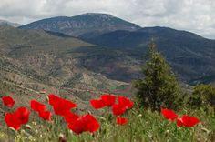 www.gudarjavalambre.es  Sierra de Javalambre. Comarca Gúdar - Javalambre, Teruel, Aragón, España.