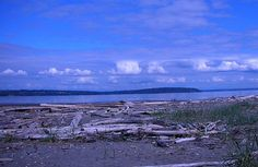 Whidbey Island with Kids: 7 Ways to Get on Island Time