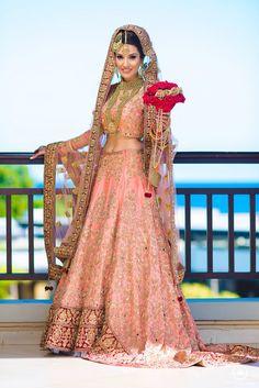 Indian Bridal Outfits, Pakistani Outfits, Indian Dresses, Elegant Bride, Beautiful Bride, Pakistan Fashion, Asian Bride, Bridal Lehenga, Indian Fashion