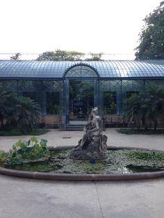 Orto botanico_Palermo