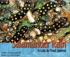 Salamander Rain: A Lake and Pond Journal (Sharing Nature With Children Book) by Kristin Joy Pratt-Serafini. $8.95. Publication: February 1, 2001. Publisher: Dawn Pubns (February 1, 2001). Reading level: Ages 6 and up. Series - Sharing Nature With Children Book. Author: Kristin Joy Pratt-Serafini