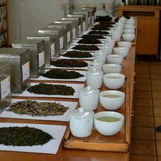 Tea Shops: Yumchaa Soho; London