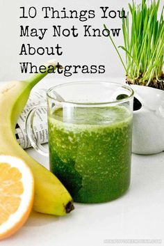 "10 Things You May Not Know About Wheatgrass1. Nicknamed ""liquid gold,"" one serving of wheatgrass juice is the rough equivalent of one and a half pounds of dark leafy green vegetables.2. Because of its high chlorophyll content, wheatgrass has a strong alkalizing and detoxifying effect on the body.3. Growing wheatgrass at home is easy from seeds or whole grain wheat berries, by hand or with a sprouting kit. Perfect for having wheatgrass on hand for smoothies at all times!4. Like all…"