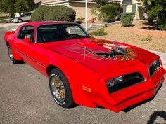 1977 Pontiac Trans Am Trans Am | eBay