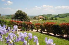 Tuscany / Italy - Toscana / Itália