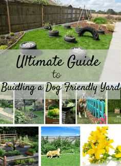 Tips for building a dog-friendly garden stop your dog from digging out your flower beds and building a sensory garden. Tips for building a dog-friendly garden stop your dog from digging out your flower beds and building a sensory garden. Dog Friendly Backyard, Dog Backyard, Backyard Landscaping, Dog Friendly Plants, Landscaping Ideas, Dog Playground, Playground Ideas, Dog Garden, Garden Oasis