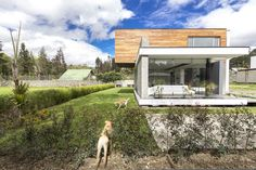 Gallery of House PY / ModulARQ arquitectura - 1