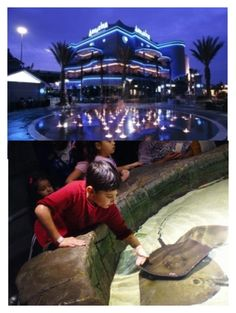 """Downtown Houston Aquarium with Austin and Paislee"" by austinsmango-96 ❤ liked on Polyvore featuring interior, interiors, interior design, home, home decor and interior decorating"