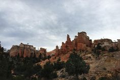 The Mossy Cave Trail in Bryce Canyon is an easy hike, perfect for kids and adults alike to see hoodoos up close.