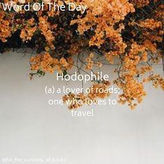 Word Of The Day! • • • #hodophile #wordoftheday #forthecuriosityofbooks #words #books #literature #photooftheday #school #definition #instagram