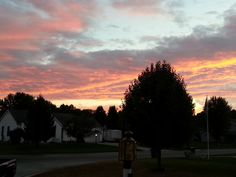 Pink Blue Sky tree lines