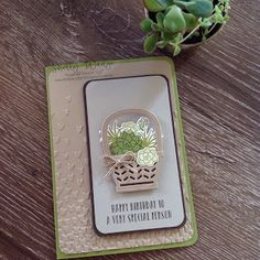 birthday card using Stampin Up Oh So Succulent & Basket bunch bundle. Card by Shelley Wadge 2017 Occasions Catalogue Holiday Cards, Christmas Cards, Birthday Cards For Women, Stamping Up Cards, Cute Cards, Cards Diy, Flower Cards, Homemade Cards, Making Ideas