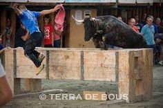 Concurso 2015 / Segorbe