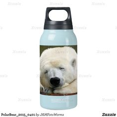PolarBear_2015_0401 SIGG Thermo 0.3L Insulated Bottle