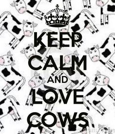 Cow Lovers