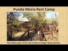 Letaba Rest Camp, Kruger National Park, South Africa - YouTube Kruger National Park, Game Reserve, South Africa, Landscapes, Wildlife, Rest, Camping, World, Paisajes