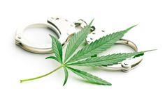 Legalizacja marihuany ma bezpośredni związek ze zmniejszeniem się przestępczości.