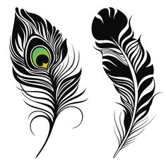 Feather abstract vectors material 01 - https://www.welovesolo.com/feather-abstract-vectors-material-01/?utm_source=PN&utm_medium=wesolo689%40gmail.com&utm_campaign=SNAP%2Bfrom%2BWeLoveSoLo