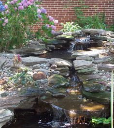 Pond….oh…if only!