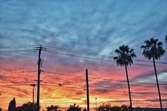 Sunset from a couple of nights ago!🌞 #landscape #nature #clouds #sky #palmtrees #colors #jeaimagery #california #lbc #huntingtonbeach #newportbeach #lagunabeach #danapoint #sanclemente #lajolla #sanfrancisco #nevada #tahoe #boston #nyc #carolina #miami #hawaii #mexico #japan #portugal #spain #ireland #scotland #greece #lajollalocals #sandiegoconnection #sdlocals - posted by Jason Alaounis  https://www.instagram.com/jasonalaounis. See more post on La Jolla at http://LaJollaLocals.com