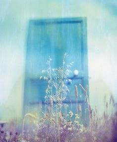 Polaroid photography inspiration by Ludwig West Film Inspiration, Whimsical Art, Soft Colors, Psychedelic, Art Photography, Cool Designs, Cool Stuff, Creative, Pretty