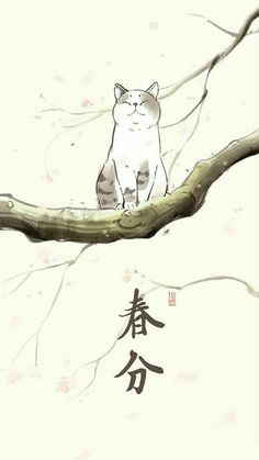Pin by kawaii kitty on kitty illustrations in 2019 Baby Animal Videos, Japanese Cat, Art Asiatique, Japanese Painting, Cat Drawing, Cute Illustration, Chinese Art, Oeuvre D'art, Neko
