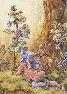 .~.✿.~.The Ground Ivy Fairy-Cicely Mary Barker.~.✿.~.
