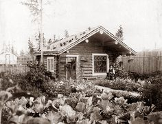 One of my favorite photos of Fairbanks (Alaska) gardening at its best.