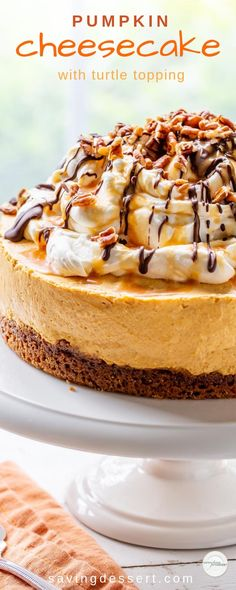 Change it up this year and thrill your holiday guests with this light and creamy Pumpkin Cheesecake with a no bake filling, a ginger snap crust and a decadent Turtle Topping. #savingroomfordessert #pumpkincheesecake #cheesecake #pumpkin #turtlecheesecake #nobakecheesecake #holidaydessert Holiday Desserts, Fun Desserts, Delicious Desserts, Dessert Recipes, Party Recipes, Turtle Cheesecake Recipes, No Bake Pumpkin Cheesecake, Raspberry Cheesecake, Oreo Cheesecake