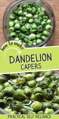 Dandelion capers taste like the real thing! In the early spring, pluck the dandelion flower bud from within the plant to make your own homemade capers with this easy recipe. Easy Healthy Recipes, New Recipes, Easy Meals, Dinner Recipes, Homemade Maple Syrup, Dandelion Recipes, Dandelion Flower, Dandelion Jelly, Recipes
