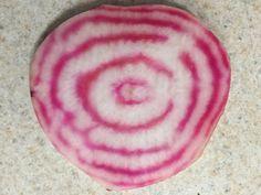 striped beet 3 2018 Love Beets, Fruits Photos, Farm Stand, Root Vegetables, Kids Rugs, Kid Friendly Rugs, Nursery Rugs