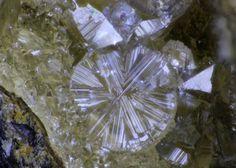 Tschernichite, (Ca,Na)(Si6Al2)O16•4-8(H2O), Neer Road, Goble, Columbia Co., Oregon, USA. Fov 3.5 mm. Colorless, cyclic-twinned tschernichite with normal dipyramidal tschernichite from the silica-rich cavities. Copyright: © Rudy W. Tschernich