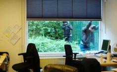 Masterdam, son. Foto: Agent trekt pistool bij arrestatie - AT5 Nieuws Wasting Time, Windows, Ramen, Window