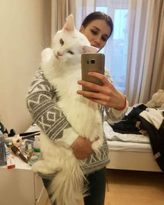 Giant Maine Coon Cat Named Tihon Loves to Hug His Human